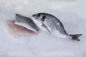 FishwithFillet.jpg